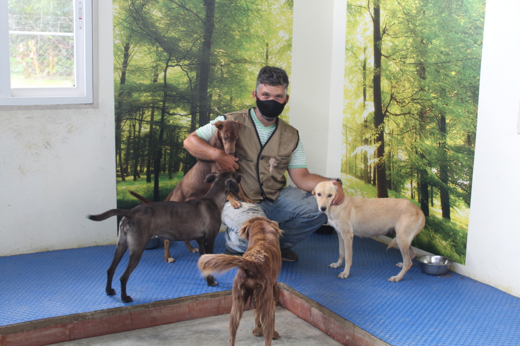 New arrival shelter dogs greeted with love