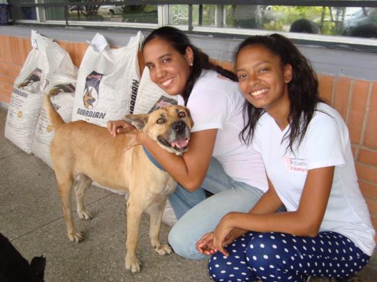 SAI Dog Shelter Volunteers Deliver Food & Love