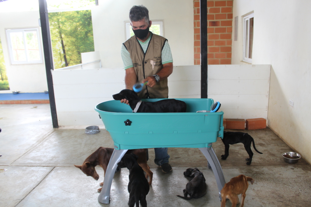 New Arrivals are receiving a bath and Spa Treat