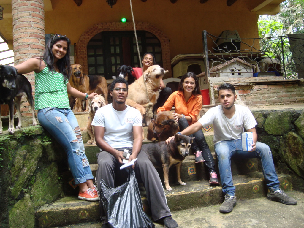 Rescued pets in 'Dog Paradise' thanks to SAI
