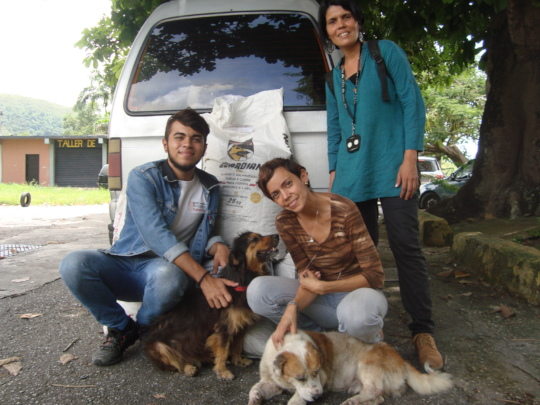 Abandoned dogs feel safe and loved with SAI Team