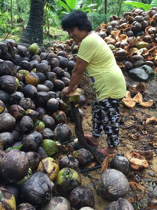 De-husking coconuts