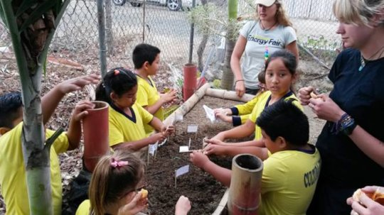 Planet Drum with students to making a tree nursery