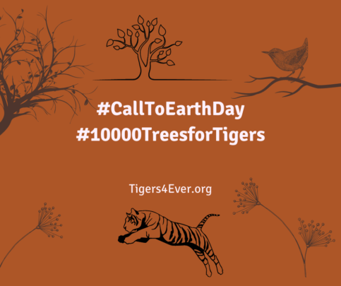 Call to Earth Day Appeal