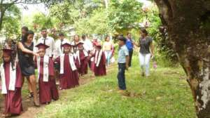 promocion  under the trees