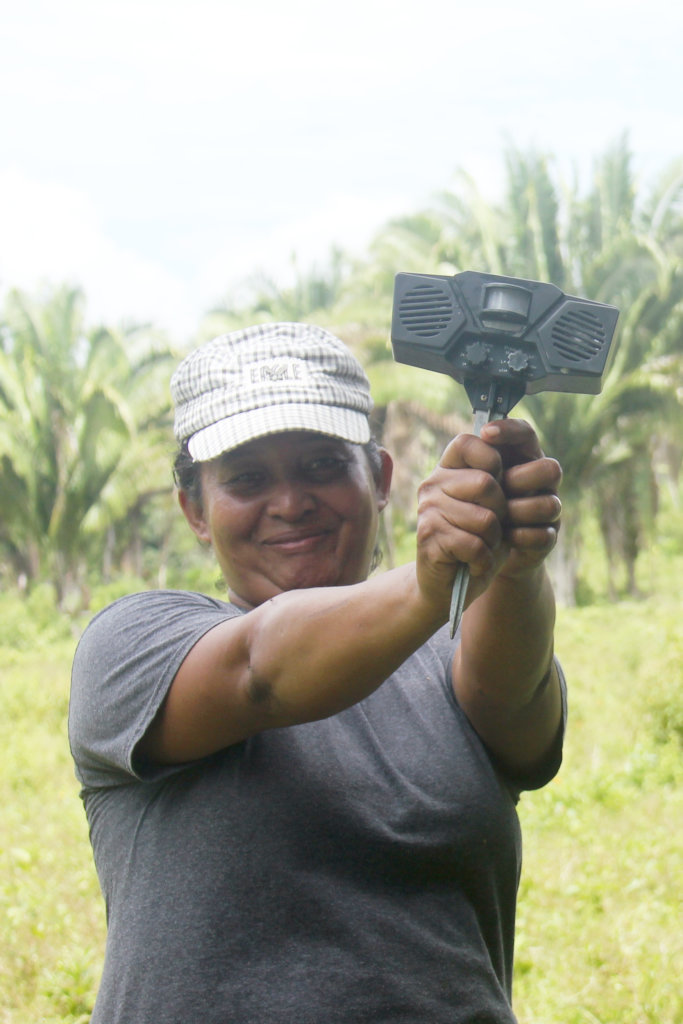Agnis Ujan with motion-sensitive sound device