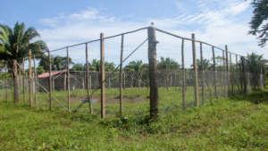 Improved fencing on Agnis' farm