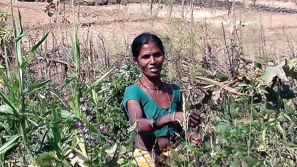 Livelihood empowerment skills for 100 tribal women