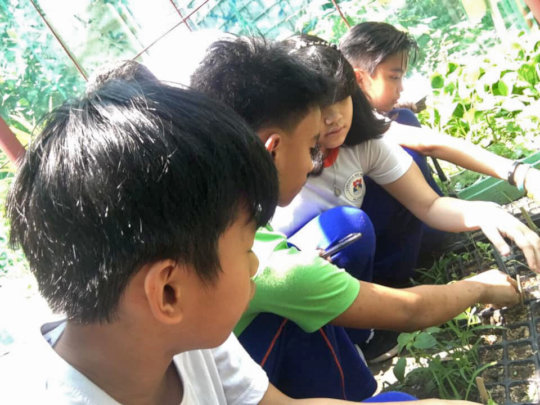 Consulting about seedlings.