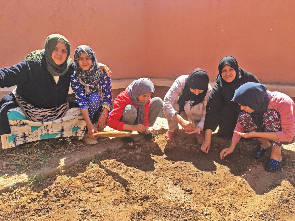 Planting at the dar taliba