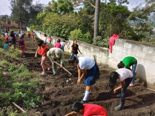 Preparing the soil in La Campa, Campira.