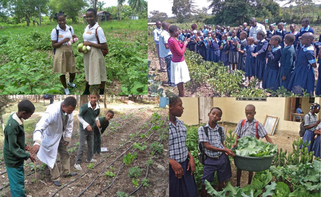 Students in Liberia, Kenya, Haiti, Ethiopia (CW)