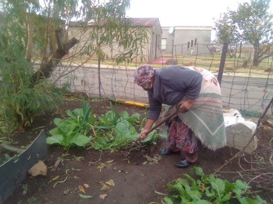Enamel tending to her garden