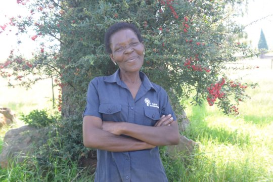 Mamsy, Parental Support Community Worker