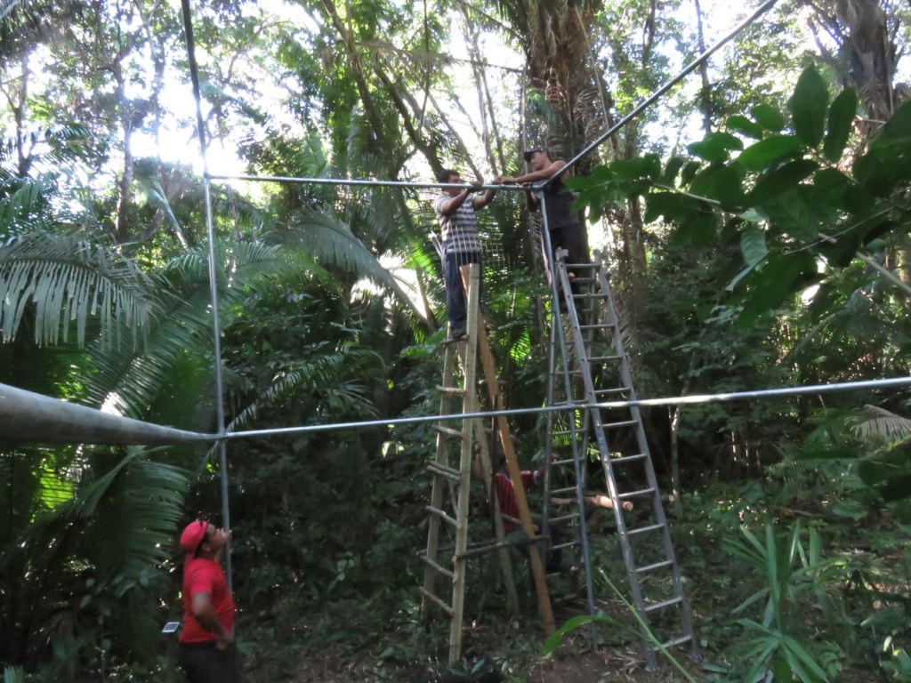 Release enclosure construction