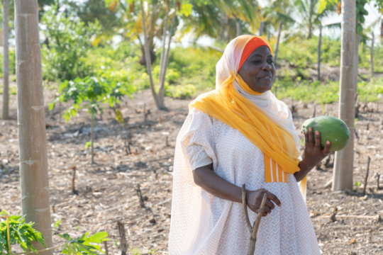 Latifah holds a papaya harvested from her orchard