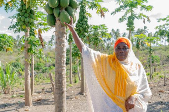 Latifah stands in her papaya grove