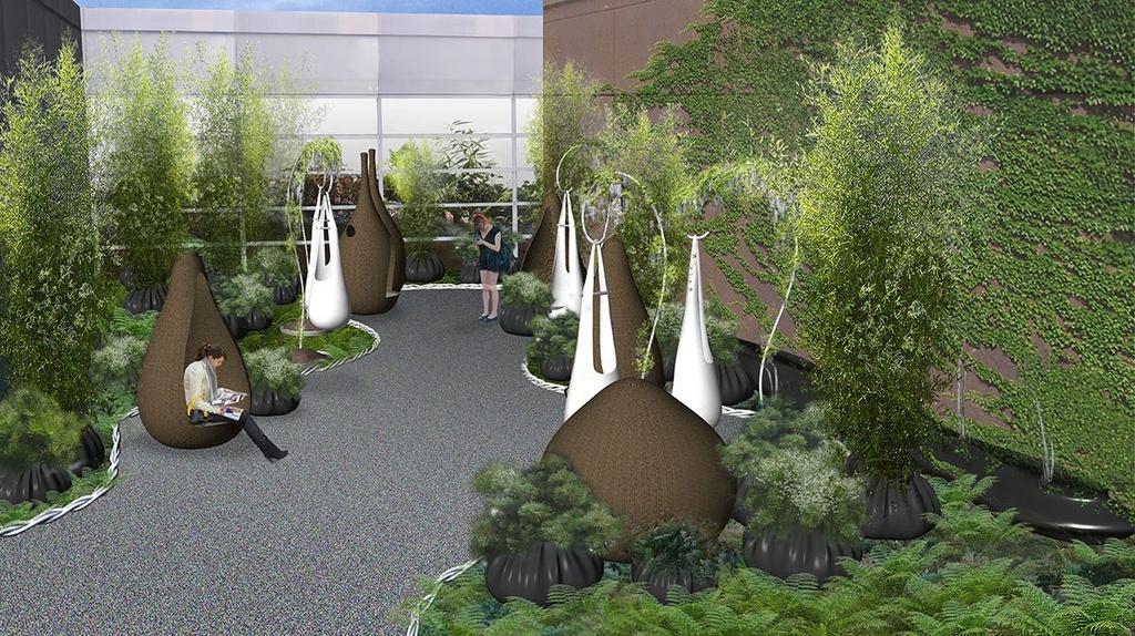 Paula Hayes healing garden rendering
