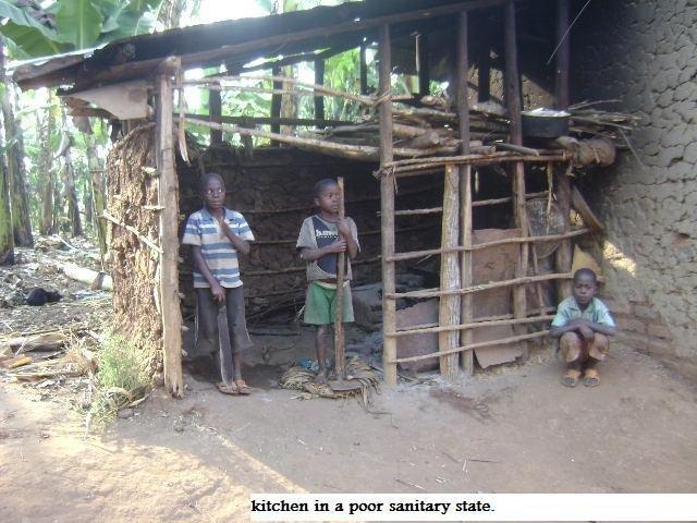 Empower 60 widowed families with Heifers in Masaka