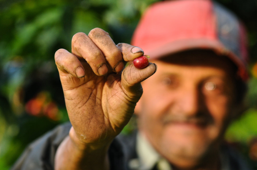Help Nicaraguan Farmers Build their Resilience