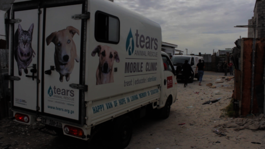 TEARS' MOBILE CLINIC IN VRYGROND (CAPRICORN)
