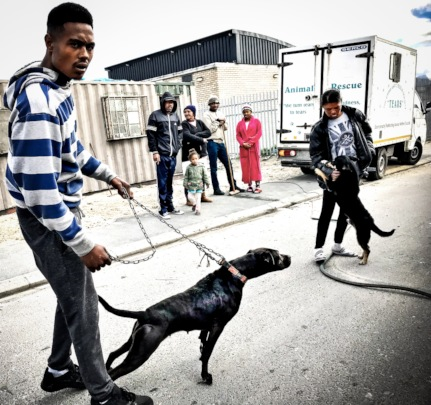 VRYGROND RESIDENTS WITH THEIR ANIMALS