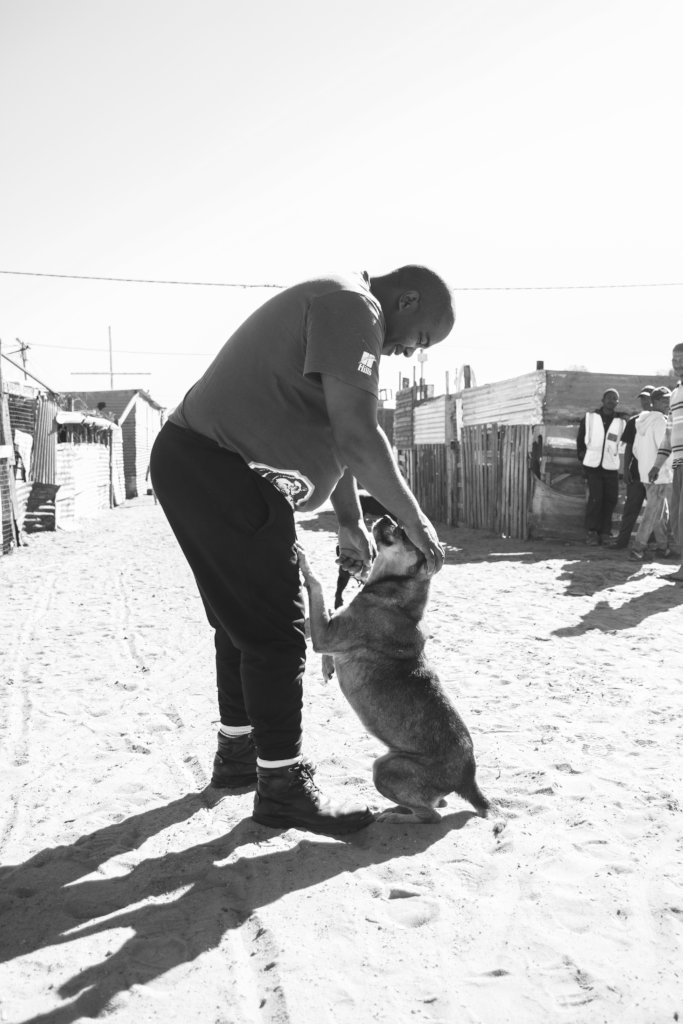 VRYGROND - SIVE GREETS A COMMUNITY DOG
