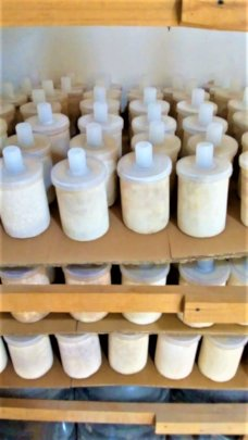 Aguadapt filters ready for testing in Chiapas
