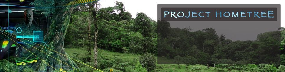Project Hometree photo created by Giant Studios