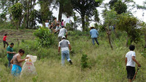 Planting on Environment Day 2009