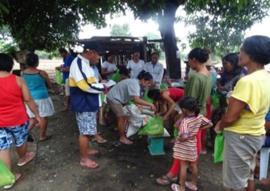 Distribution of seeds among the typhoon victims