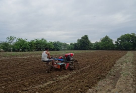 Land preparation using OISCA tractor.