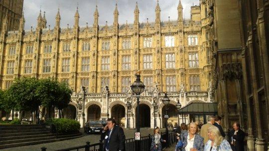 House of Commons, London - I was key panel speaker