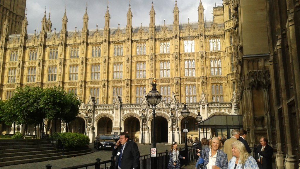 House of Commons, London - I was key panel speaker