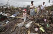 Rebuild Livelihoods - Philippines Typhoon Mangkhut