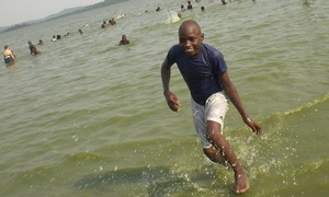 William: wade in the waters!