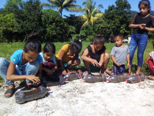 children sowing seeds
