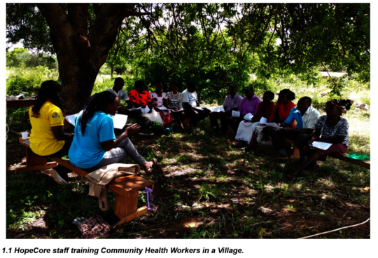 CHWs being trained on how to collect Data