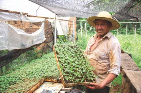 Che Ka'avoty: Assistance for Small Farmers