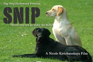 Nicole's Film
