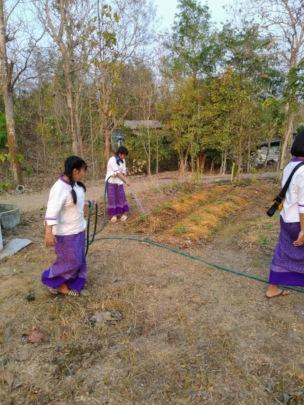 Girls water the fields after school