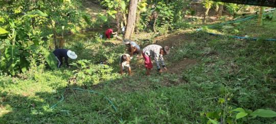 Boys weeding and prepping the plots