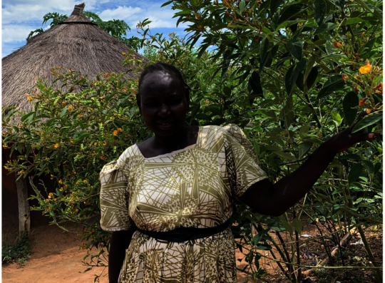 Refugee mother with pigeon peas, papaya from ICRAF