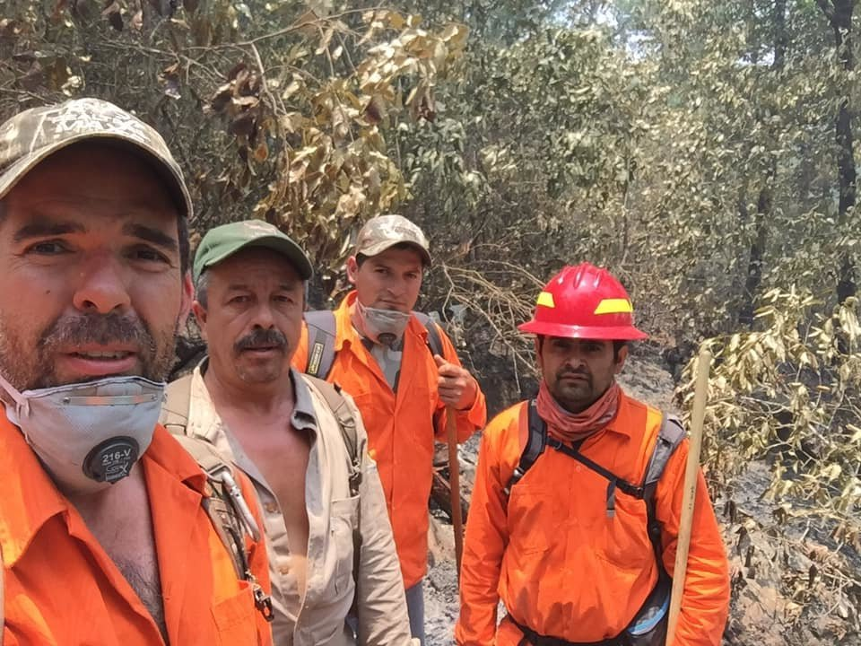 Grupo Ecologico Sierra Gorda I.A.P.