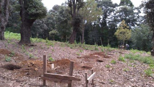 Construction of the rehabilitation center