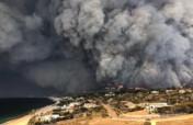 CALIFORNIA WILDFIRE RELIEF
