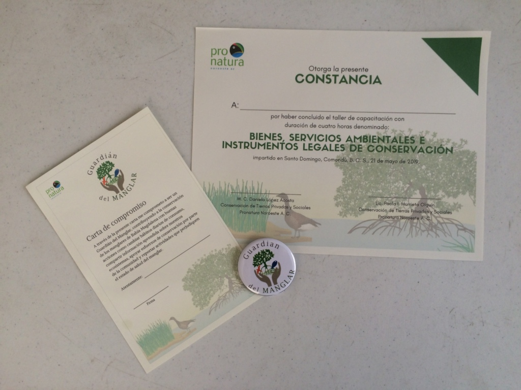 Certificate, engagement letter and official pin