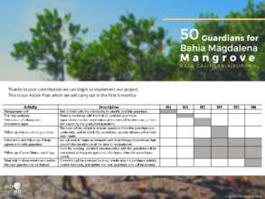 Action plan36 (PDF)