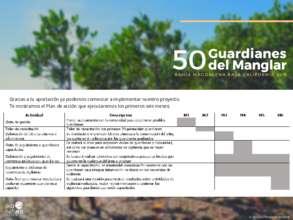Plan de accion (PDF)