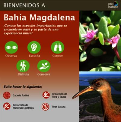Preliminary design of signs for Bahia Magdalena.